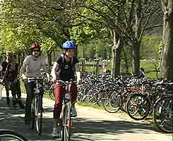 Primary German: cycling to football match, Freiburg