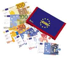 EURO notes and wallet - playmoney